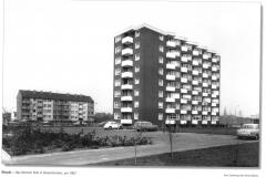 Ahrener-Feld