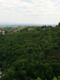 Klosterruine