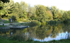 Bresgespark